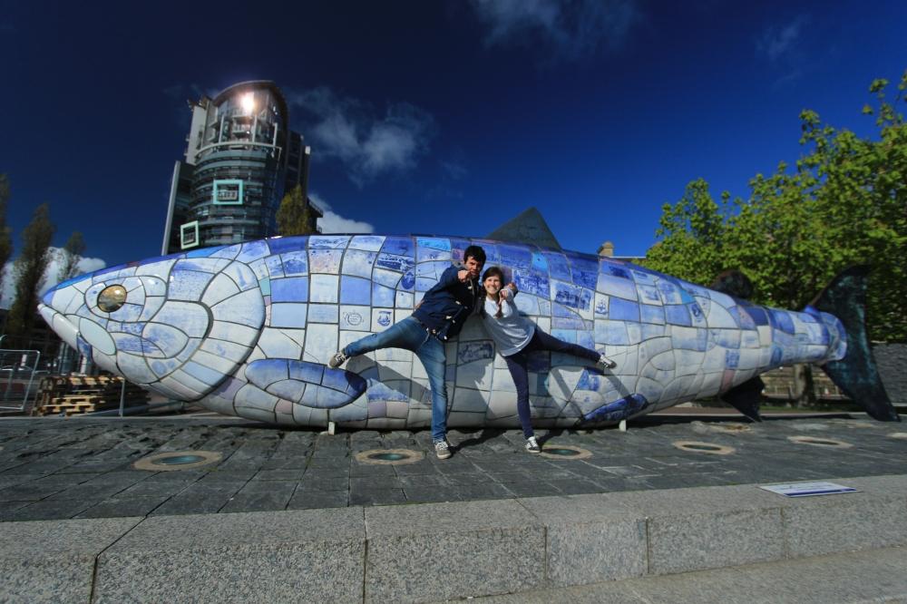 The fish - Belfast
