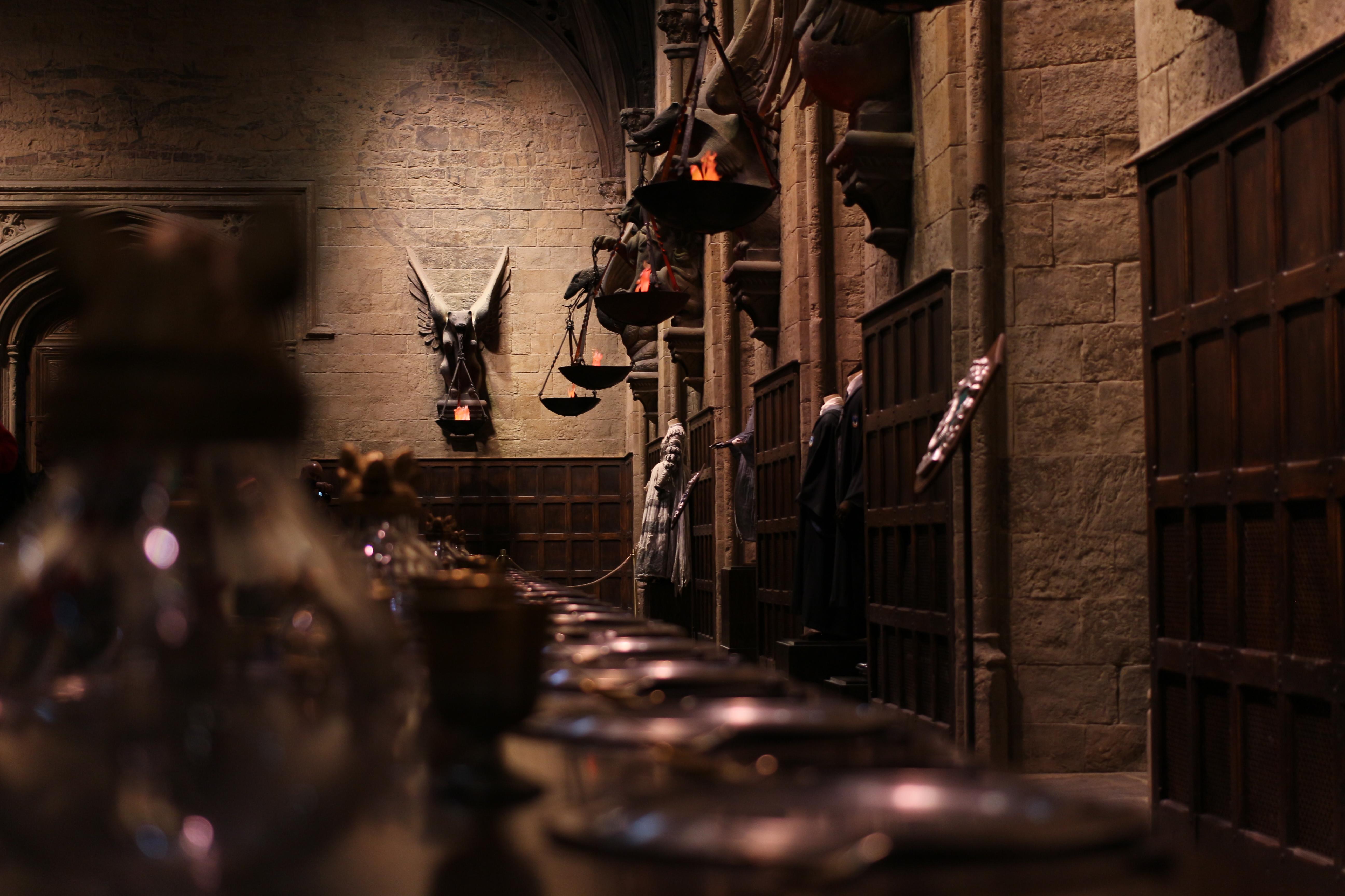 El d a que nos lleg la carta de hogwarts we need jam n for Comedor harry potter