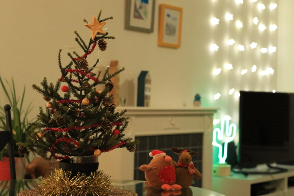 Navidad at Borjami´s