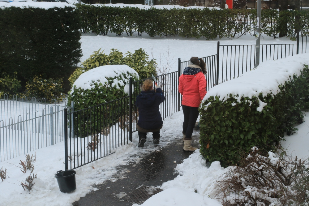 Snow Edinburgh