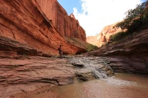 Escalante - Coyote Gulch trail